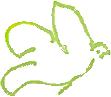 l'Officina - magasin en ligne de cosmétiques naturels et bio