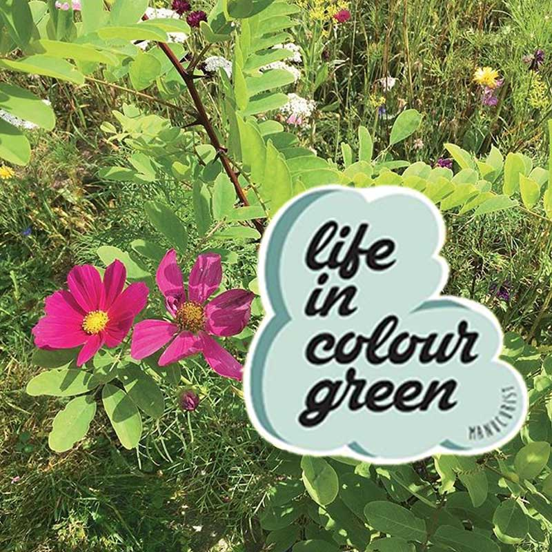 Manicurist Paris Green Garden Collection vernis Printemps Eté 2019 Life in colour Green