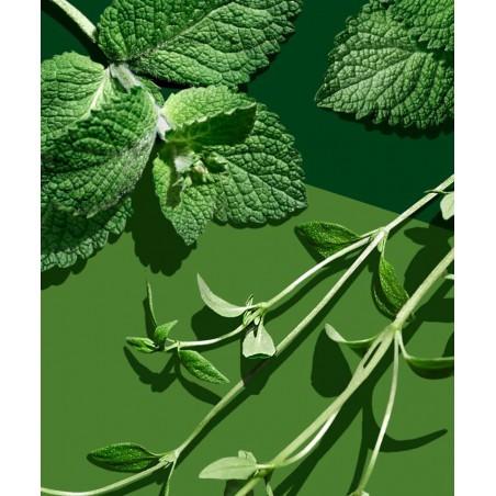 Madara cosmetics - Infusion Vert Body Wash organic