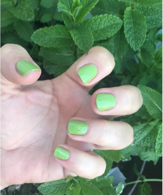Priti NYC - Vernis à Ongles Flowers - 504 Stonecrop