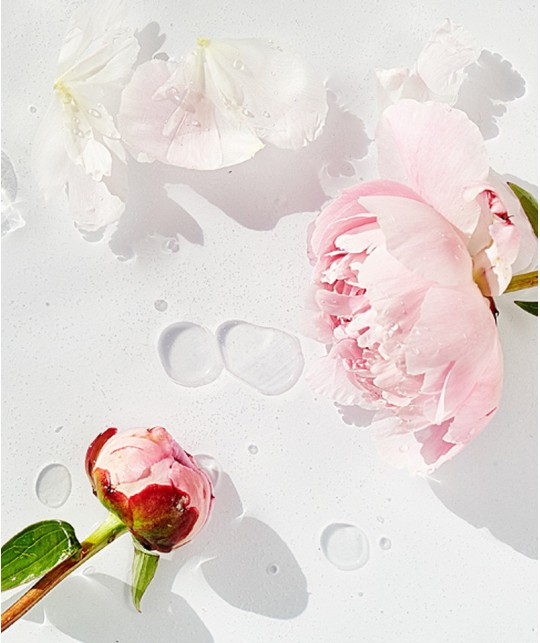 MADARA cosmétique bio Crème Jour Hydratante Visage bio SOS beauté pivoine plantes green Ecocoert