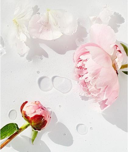 MADARA cosmétique végétale plantes fleurs Baltique Soin visage naturel hydratation SOS pivoine 100% naturel green beauté