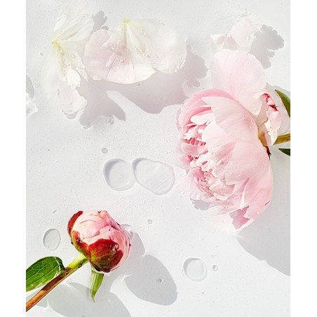 MADARA organic cosmetics - Masque Hydratant SOS Hydra (mini 12,5ml)