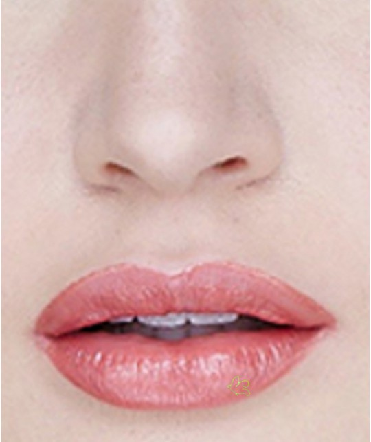 Lily Lolo Natural Lipstick Parisian Pink swatch