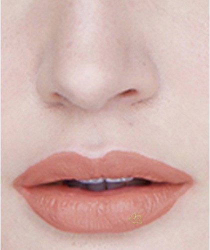 Lily Lolo Natural Lipstick Nude Allure swatch