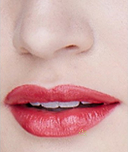 Lily Lolo Lippenstift Natural Lipstick Scarlet Red swatch
