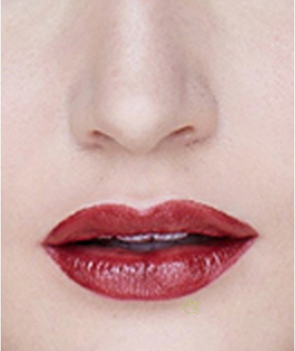 Lily Lolo Natural Lipstick Berry Crush swatch
