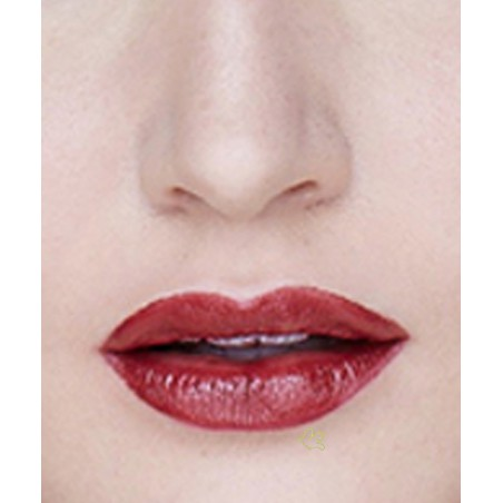 Lily Lolo - Rouge à Lèvres Naturel Berry Crush swatch bordeaux maquillage