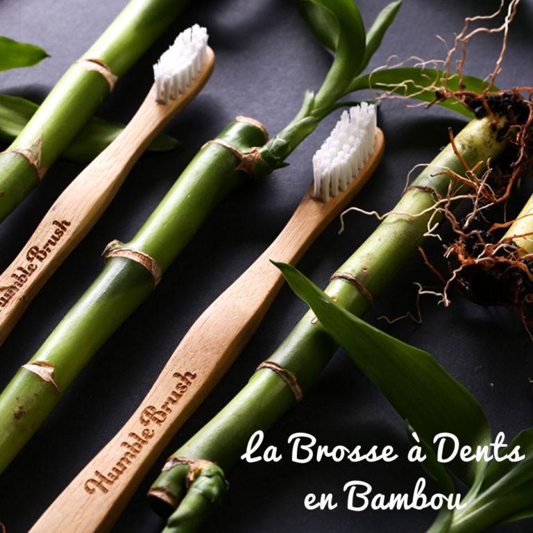 Une nouvelle marque à l'Officina: Humble Brush, la brosse à dents en bambou