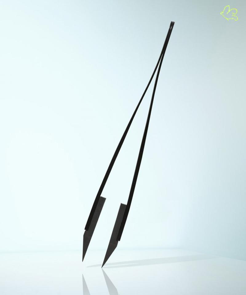 RUBIS SWITZERLAND Pince à Épiler Classic Techno mors biais Noir. Collection Homme