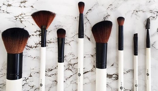 Lily Lolo makeup brushes, accessories