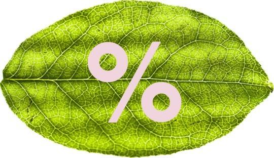 L'Officina Naturkosmetik im Angebot Reduziert Sale offer