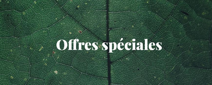 cosmétique bio naturel offres spéciales promotions beauté green Madara maquillage vernis Lily Lolo Manucurist DHC Ren Soapwalla